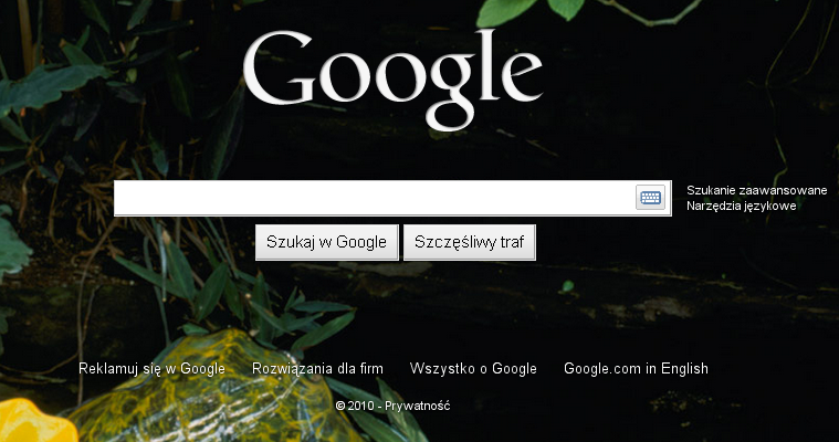 google-pl-defaultowo