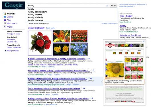 podgląd w wyszukiwarce