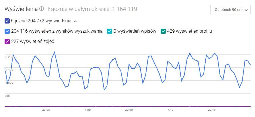 Statystyki w Google Moja Firma
