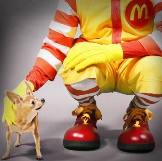 McDonalds Taco Bell