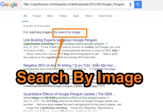 Image search nie wyszukuje obrazka t4921