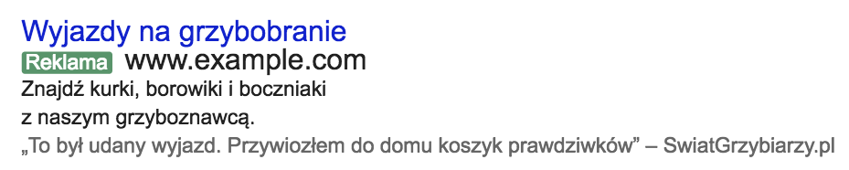 reklama w adwords