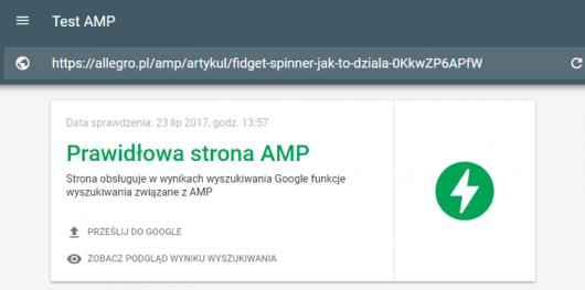 wynik testu gotowej strony amp