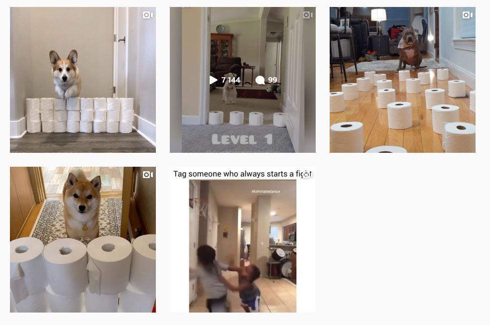 toilet paper challenge