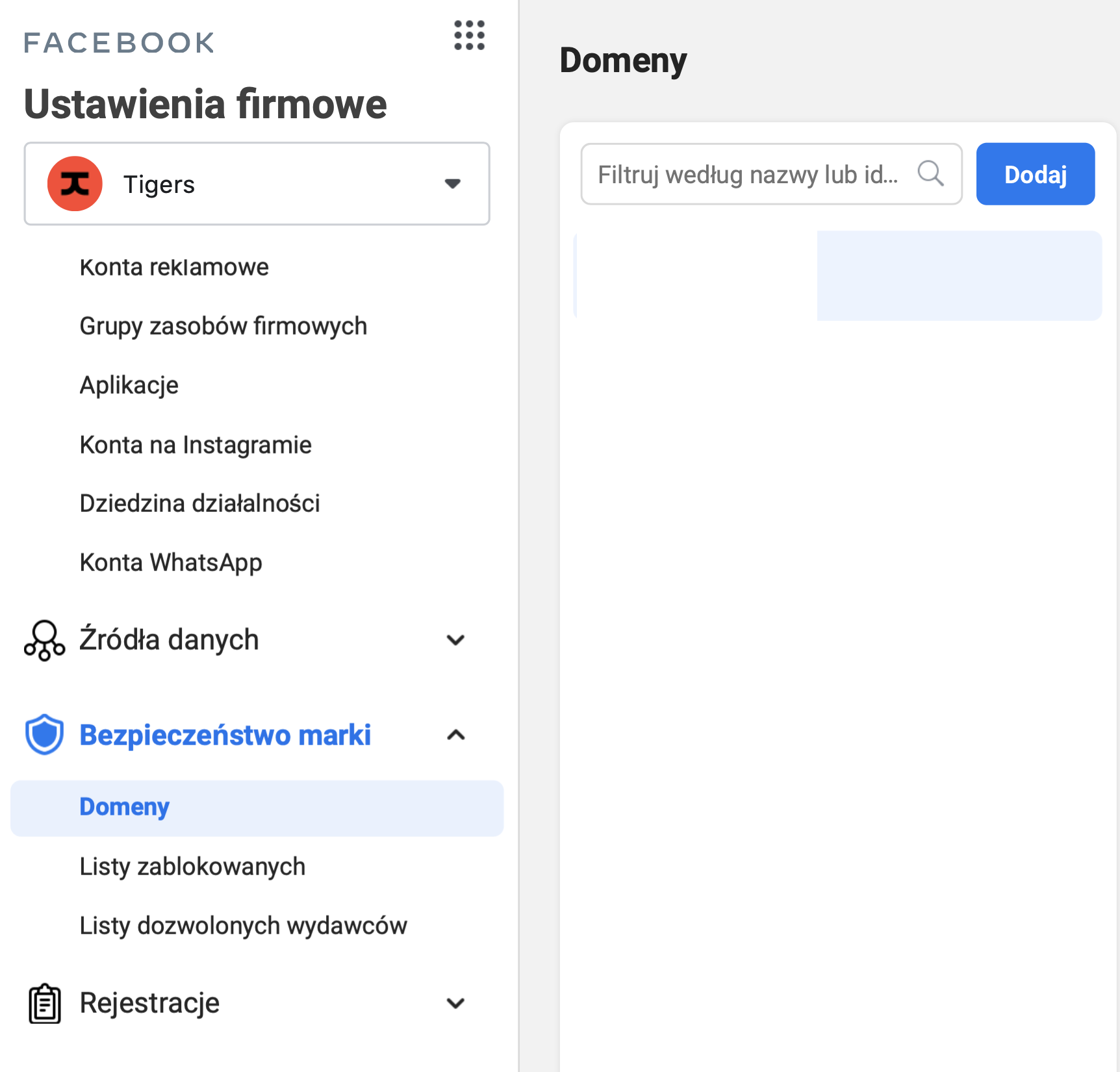 weryfikacja domeny w Business Managerze