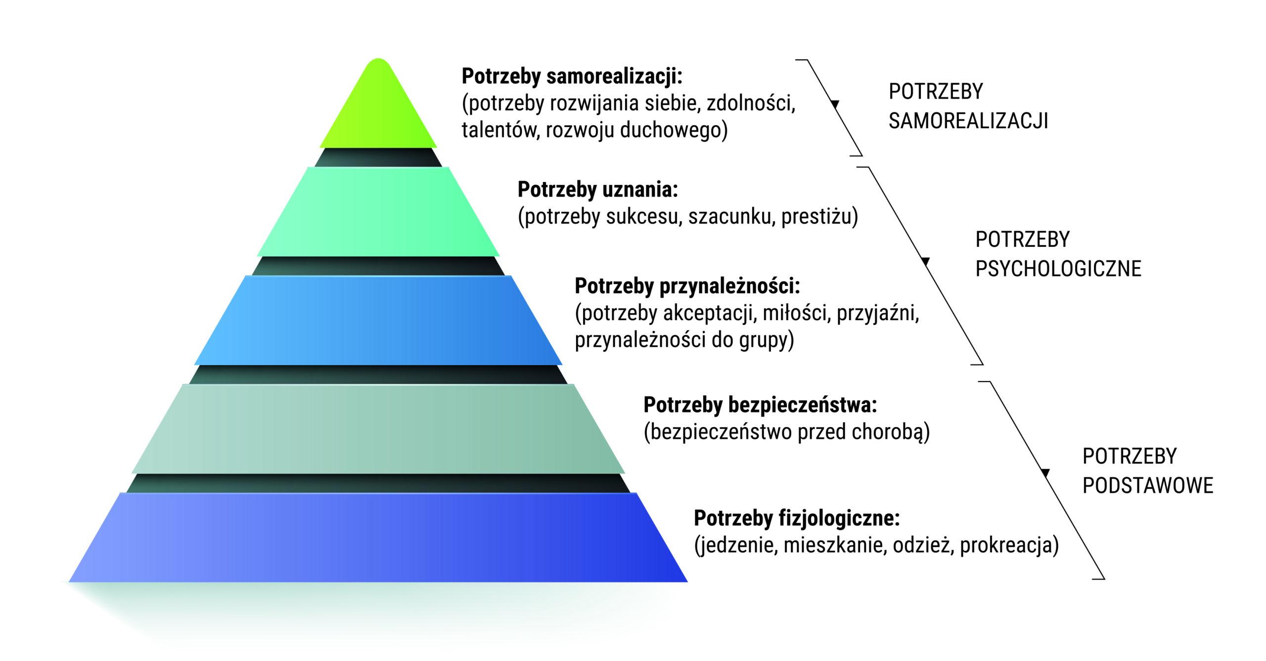 kurs online piramida potrzeb